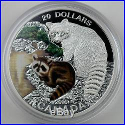 2016 $20 Baby Animals Baby Raccoon, 1 oz 99.99% Pure Silver Color Proof Coin