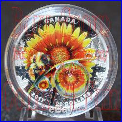 2017 Mother Nature's Magnification #1 Beauty under the Sun $20 Pure Silver Coin