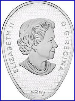 2018 1 Oz Silver $20 FALCON LAKE INCIDENT Unexplained Phenomena Coin