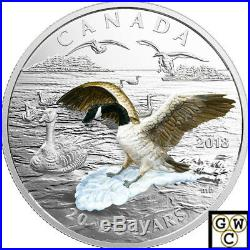 2018'Approaching Canada Goose-3D' Color Proof $20 Silver Coin 1oz. 9999(18252)