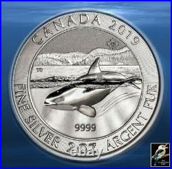 2019 Canada Canadian Orca Whale 2 oz Silver Coin in capsule