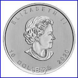 2020 Canada Canadian Goose 2 oz Silver $10 Coin GEM BU Delay SKU60773