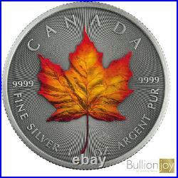 2020 Canada Maple Leaf Four Seasons Silver Coin Set