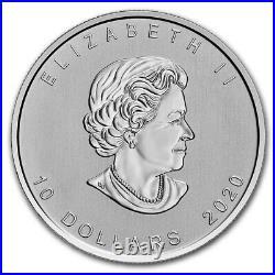 2 oz Silver Coin 2020 Canadian Goose Canada $10 Coin Bullion
