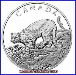 CANADA $20 1oz FINE SILVER COIN COUGAR WILDERNESS 1 PURE GOLD+1 PLATINUM (2014)