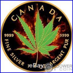 HYBRID Maple Leaf Burning Marijuana 1 Oz Silver Coin 5$ Canada 2017